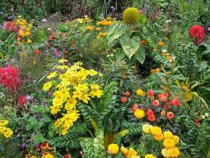 Разные цветы вместе