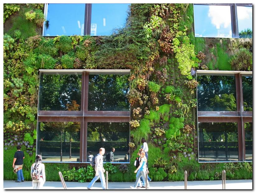 Зеленый дом в Париже