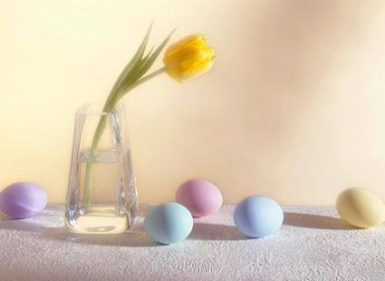желтый тюльпан и крашенные яйца