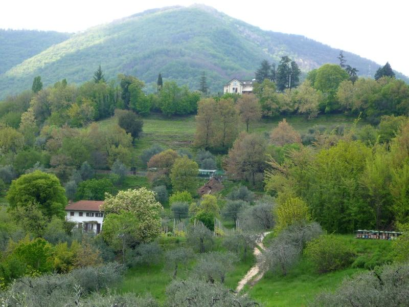 Горы в районе озера Гарда весной