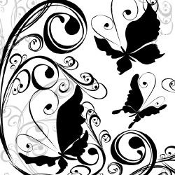 Бабочки. Иллюстрация к Итальянские пословицы на языке оригинала с переводом
