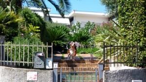 Флора и фауна итальянского сада