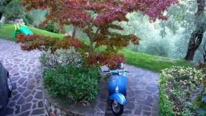 Синий скутер
