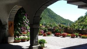 Цветы во внутреннем дворике