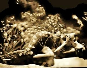 Поль Верлен «Вот осень наступила». Фрагмент фото Кирсти Митчел