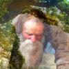 старик сажает дерево