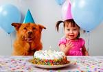 Торт. Девочка с собакой и воздушные шарики.